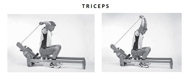 veslo-triceps