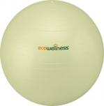 Gymnastický míč Ecowellness