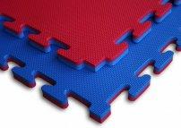 X-gym TATAMI Economic 100 x 100 x 3 cm modro-červené