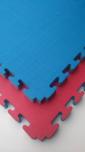 X-gym TATAMI Economic 100 x 100 x 4 cm modro-červené