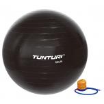 Gymnastický míč s pumpičkou 65 cm TUNTURI černý