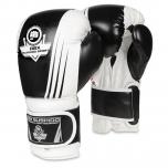 Boxerské rukavice DBX BUSHIDO B-2v3A