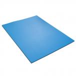 Podložka na cvičení dvouvrstvá 12 mm 95 cm Maxi YATE černá / modrá