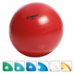 Rehabilitační míč Myball 55 cm TOGU