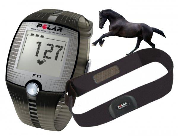 POLAR FT1 equine