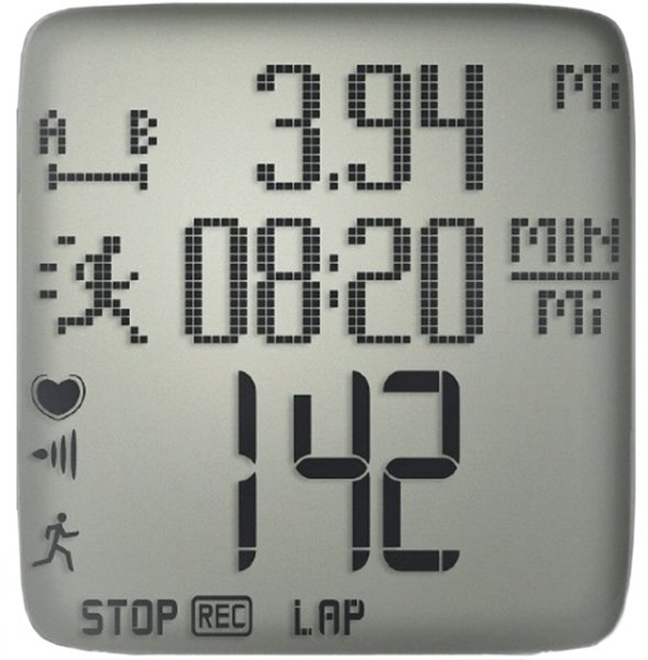 Polar RS300X display