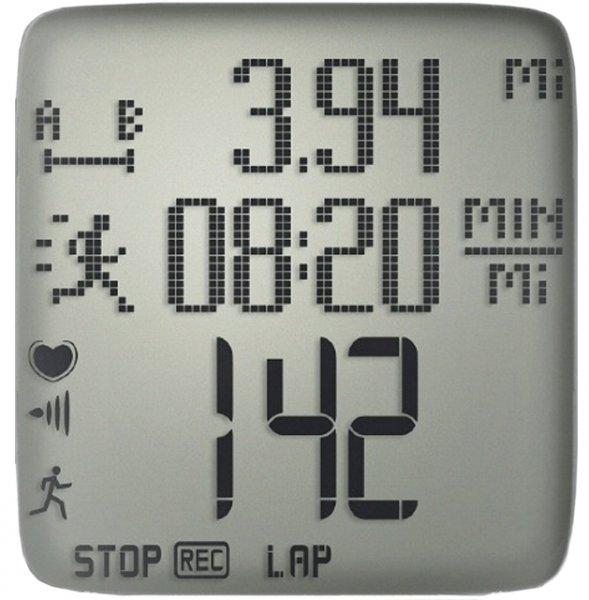 Polar RS300X display