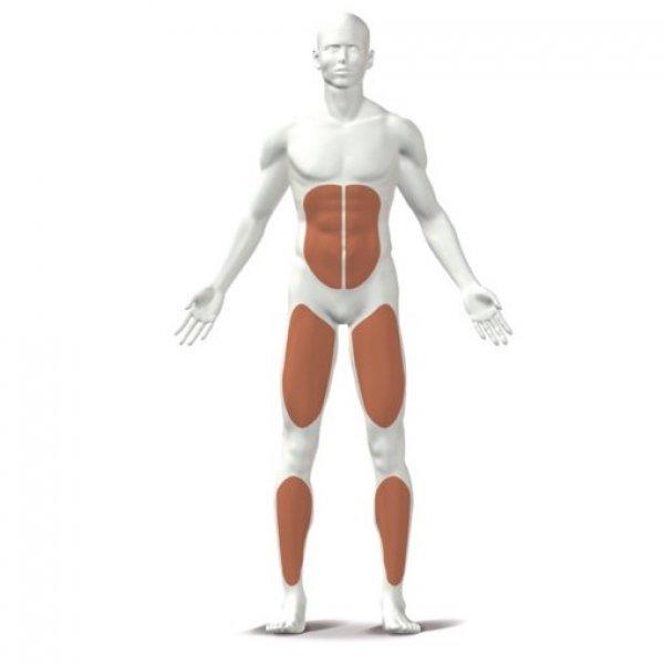 Balanční podložka Balance Board 40 cm KETTLER muscle