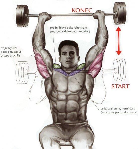 Lavice tlaky na ramena