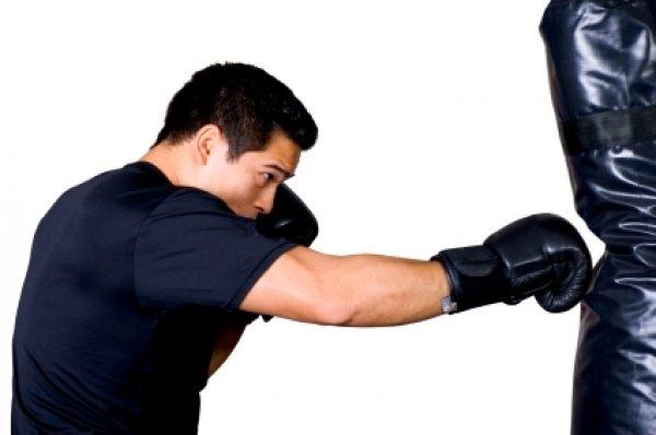 pytlovky boxerg