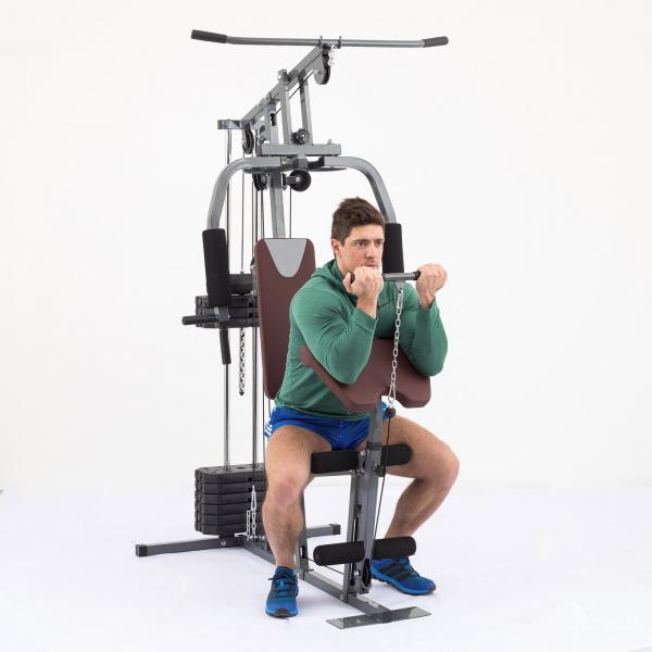 Posilovací věž  TRINFIT Gym GX1  bicepsg