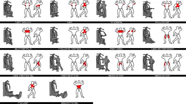 bh fitness multigym plus cviky