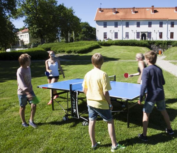 Stůl na stolní tenis venkovní STIGA Outdoor Roller promo fotka1