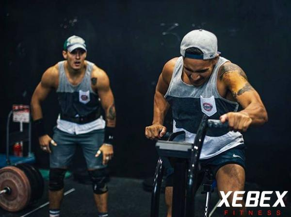 Rotoped XEBEX promo