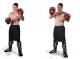Boxerské lapy - kůže DBX BUSHIDO ARF-1101-S workout