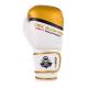 Boxerské rukavice DBX BUSHIDO DBD-B-2 v1 3