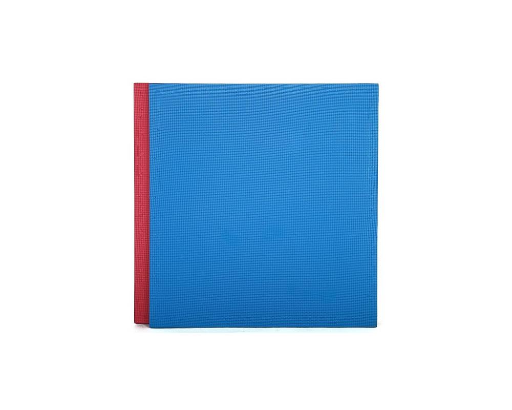 Tatami Economic 100 x 100 x 3 cm X-gym modro-červené