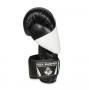 Boxerské rukavice DBX BUSHIDO B-2v6 detail 1