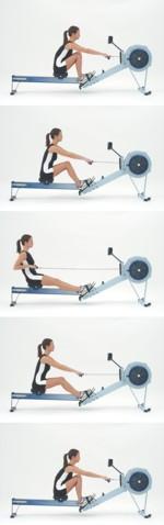 Jak správně cvičit na veslovacím trenažéru